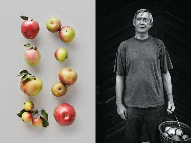 Apples - Hans-Rudolf Schweizer - Neukirch an der Thur (Thurgau, CH).