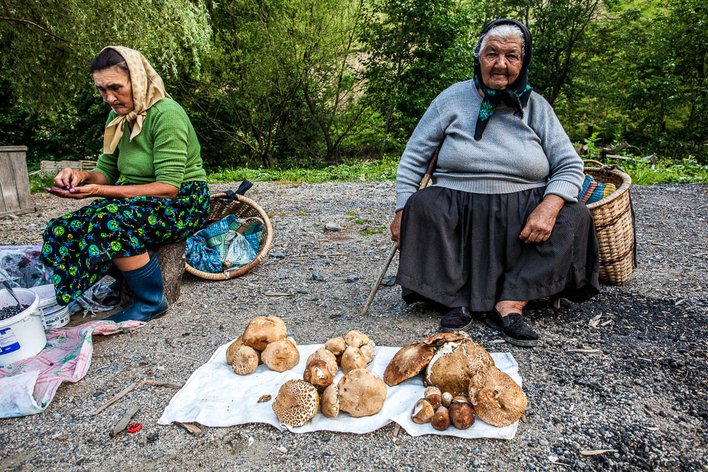 Old lady selling massive porcini