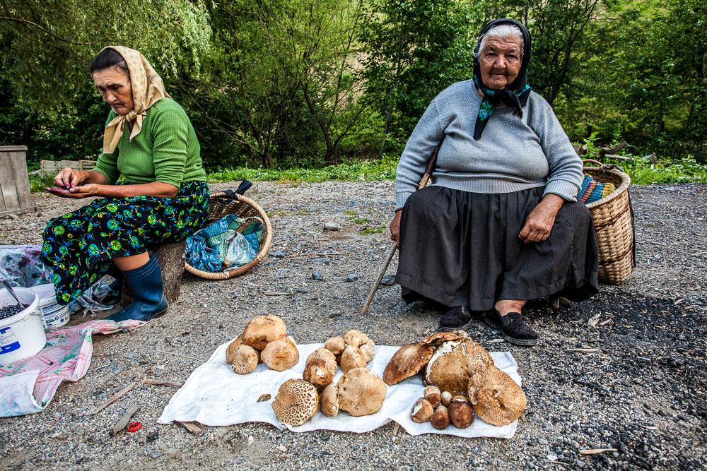 Old lady selling massive porcini