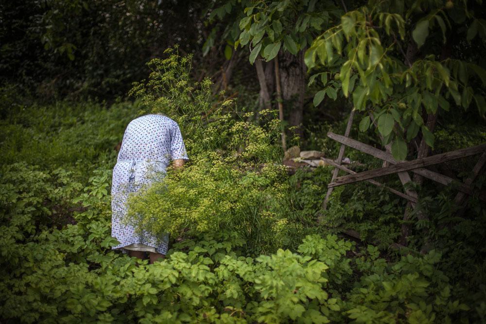 Grand-ma in the garden