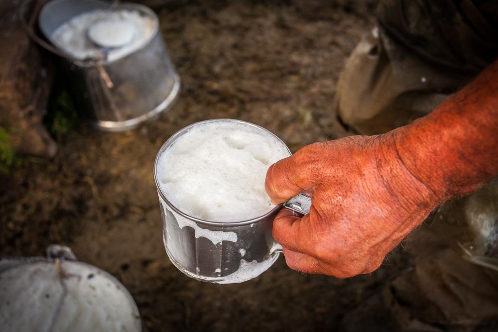 Cup of fresh sheep milk